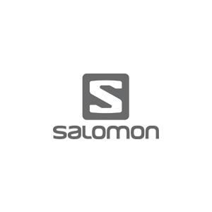 Président de Salomon