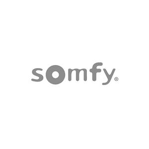 Président du Directoire de SOMFY
