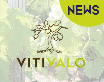 Dernières news du projet Vitivalo