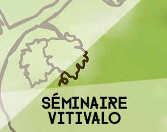 [Séminaire] Projet VITIVALO : état des recherches, et après ?